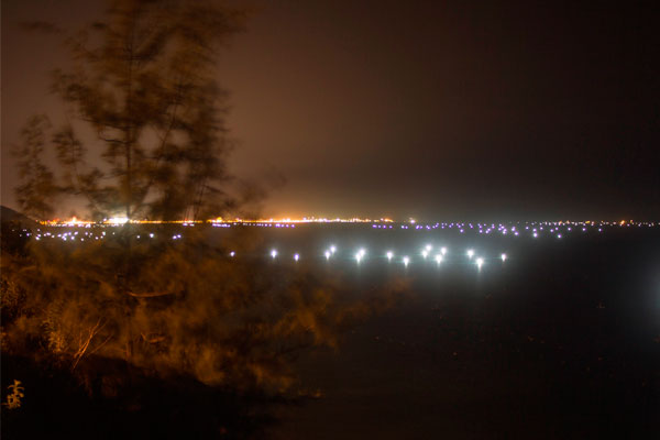 Огни в заливе Куинёна. Ловля кальмаров.