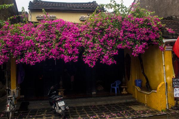 Красивые дома в Хойане. Вьетнам.