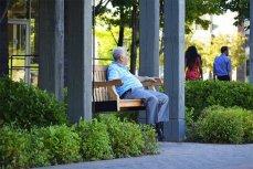 Одинокий пожилой мужчина.