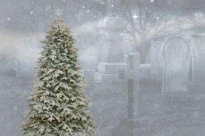 Ель для Нового года с кладбища