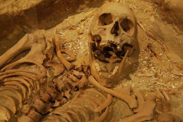 Скелет одной из жертв трагедии на Batavia в музее затонувших кораблей в Австралии
