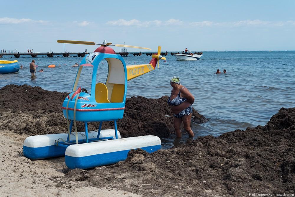 На центральном городском пляже в Евпатории горы  выброшенных водорослей