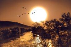 Активность Солнца