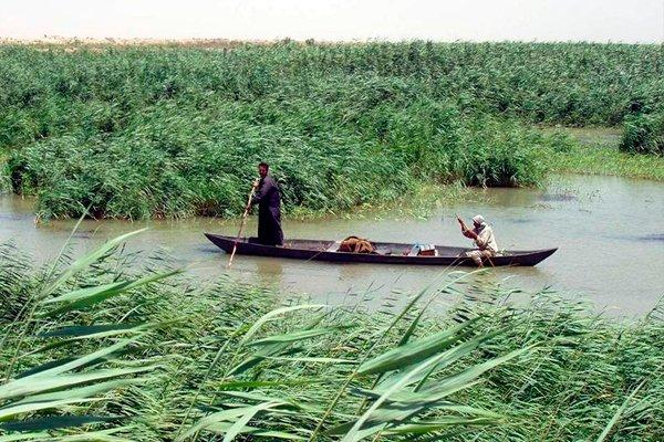 Болотные арабы передвигающиеся на лодке