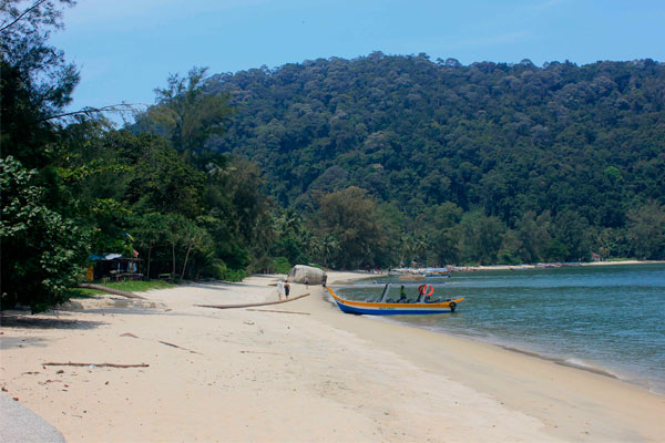 Пляж обезьян в парке Taman Negara Pulau Pinang. Остров Пинанг (Пенанг), Малайзия.