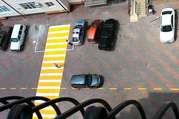 Дорожно-постовая служба следит за порядком во дворе
