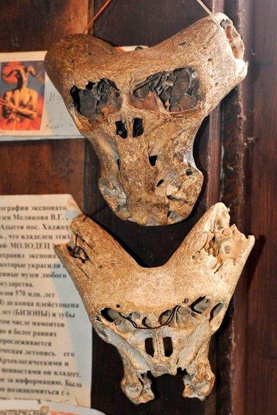 Необычные черепа, найденные в Адыгее