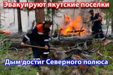 НАСА сообщило, что впервые в истории человечества дым от лесных пожаров достиг Северного полюса