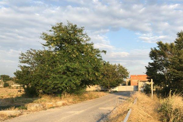 Въезд на территорию очистных сооружений в Геленджике