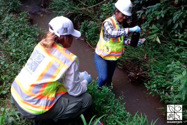 Панамские экологи берут пробы воды на туристическом острове Игуана