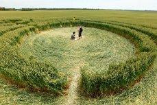 Круги на пшеничных полях 45-й параллели