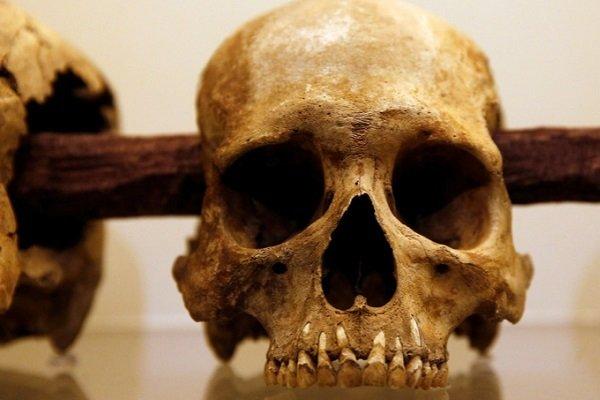 Смерть ацтеков: ученые назвали виновных