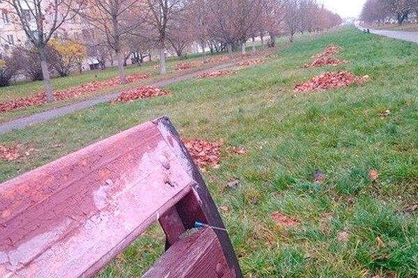 Иглы от шприцов торчащие из скамейки