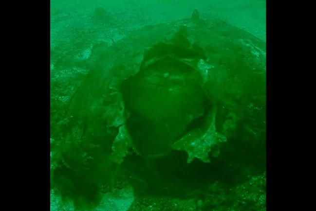 В Геленджике нашли противокорабельная мина времён Великой Отечественной Войны