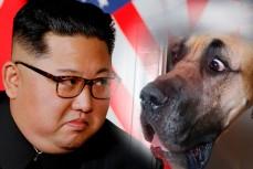 Ким Чен Ын и собака