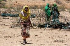 Пострадавшие от засухи в апреле 2016, Эфиопия.