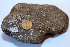 Камень с «микрочипом» возрастом полмиллиарда лет
