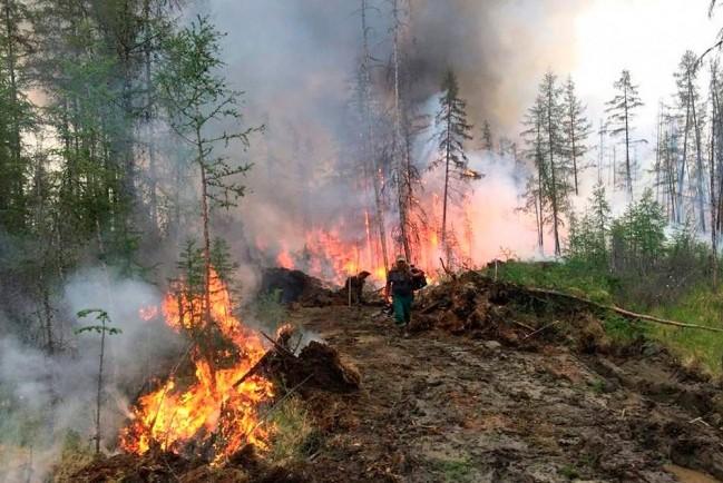 В Якутии лесные пожары продолжают бушевать