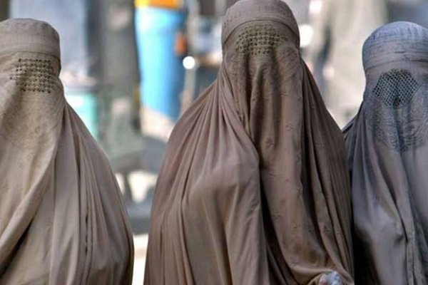 ВАвстрии запретили носить паранджу имедицинские маски