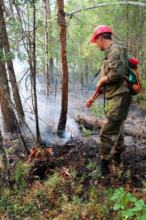 Пожарный тушит лес в Красноярском крае