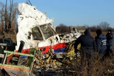 Сбитый малазийский «Боинг» МН17 над Донбассом
