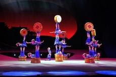 Выступление артистов циркового искусства.