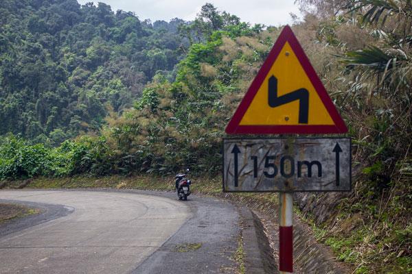 Дорога в тропическом лесу. Фоннья. Вьетнам.