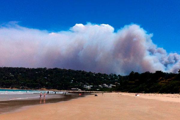 Лесной пожар на побережье штата Виктория.
