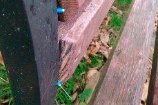 Использованные шприцы торчат из скамейки