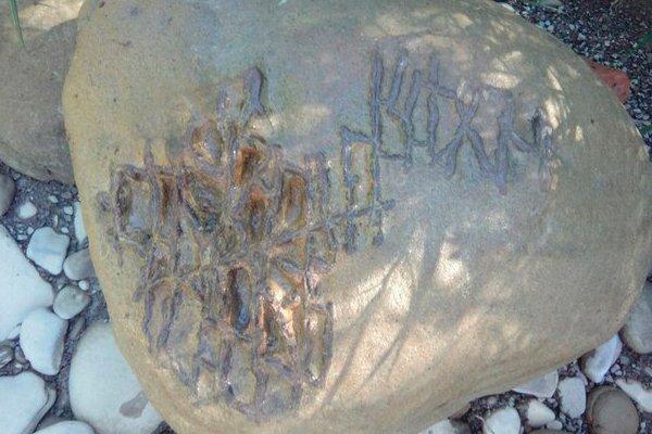 Камень с фрагментами жизнедеятельности ископаемых животных