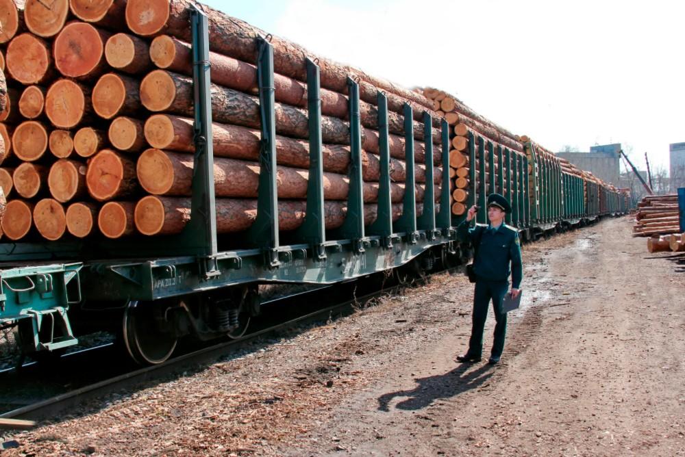 Древесина на экспорт
