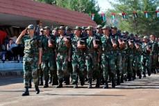 На Украине заявили о неудаче российского проекта реорганизации сирийской армии