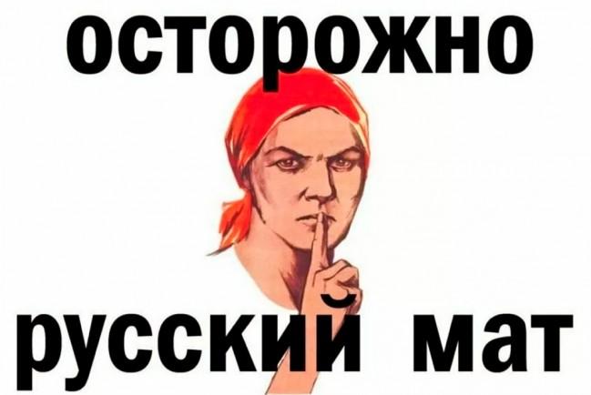 Материться в социальный сетях запрещено законом РФ