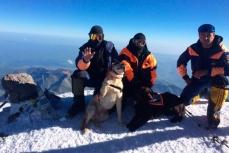 Спасатели МЧС на вершине Эльбруса со своими четвероногими коллегами.