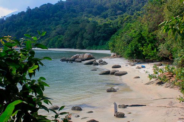 Парк Taman Negara Pulau Pinang. Остров Пинанг (Пенанг), Малайзия.
