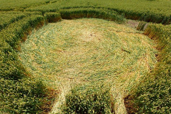 Загадочные круги на полях