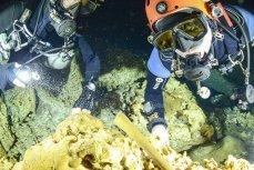 Водолазы ищут человеческие останки эпохи плейстоцена в пещерной системе Сак Актун
