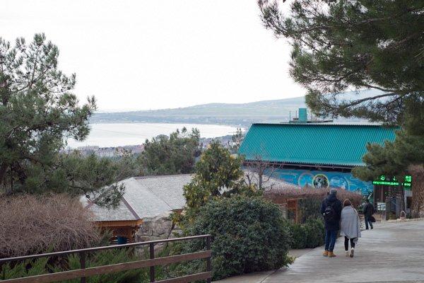 «Сафари-парк» в Геленджике, вид на море