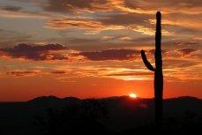 Аризона.