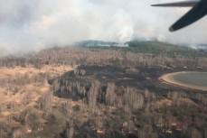 Горит лес в Чернобыльской зоне