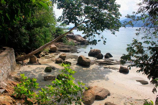 Национальный парк Taman Negara Pulau Pinang. Остров Пинанг (Пенанг), Малайзия.