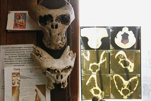 Два необычных черепа с рогами, найдены в одной из пещер на Большом Тхаче