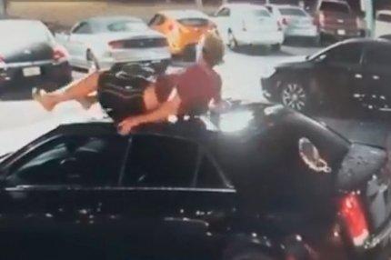 Приземлился на крышу автомобиля
