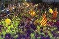 Акции в поддержку независимости Каталонии