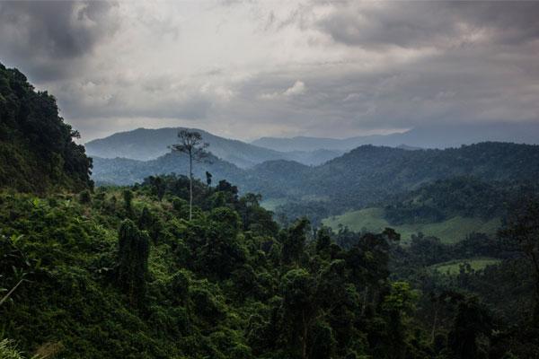 Окрестности деревни Фоннья. Вьетнам.