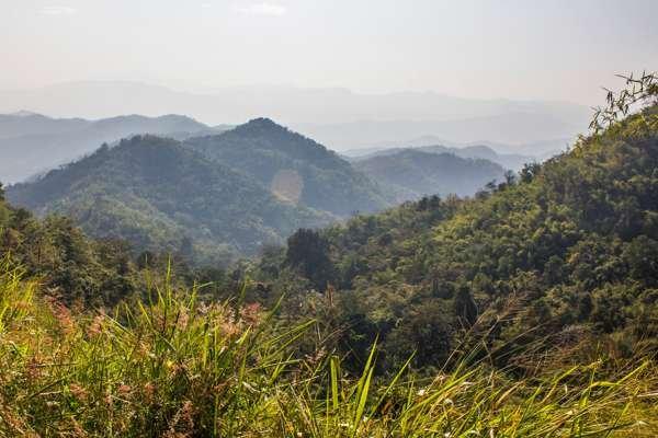 Окрестности Чианг Мая.