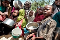 ООН предупредила об угрозе острого голода в 20 странах мира